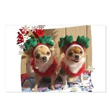 Chihuahua Xmas Postcards (Package of 8)