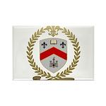 LEVANIER Family Crest Rectangle Magnet (10 pack)