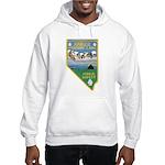 Pyramid Lake Hooded Sweatshirt