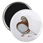 Domestic Flight Mealy Magnet