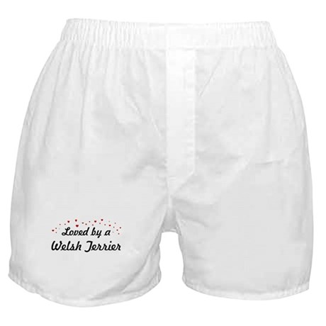 Loved By Welsh Terrier Boxer Shorts