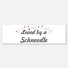 Loved By Schnoodle Bumper Bumper Bumper Sticker