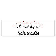 Loved By Schnoodle Bumper Bumper Sticker