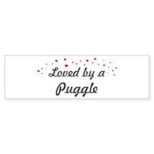 Loved By Puggle Bumper Car Sticker