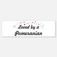 Loved By Pomeranian Bumper Bumper Bumper Sticker