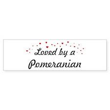 Loved By Pomeranian Bumper Bumper Sticker