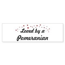 Loved By Pomeranian Bumper Car Sticker
