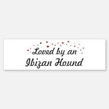 Loved By Ibizan Hound Bumper Bumper Bumper Sticker