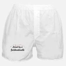 Loved By Goldendoodle Boxer Shorts