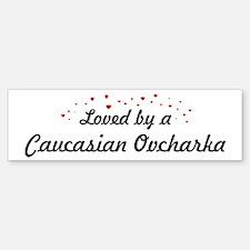 Loved By Caucasian Ovcharka Bumper Bumper Bumper Sticker