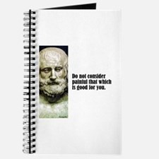 """Euripides """"Painful"""" Journal"""
