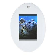 Cute Hippopotamus Oval Ornament