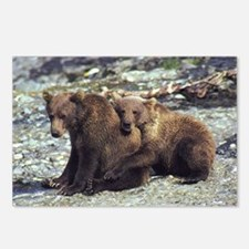Cute Funny cubs Postcards (Package of 8)