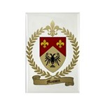 MASSON Family Crest Rectangle Magnet