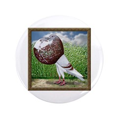 "Cropper Pigeon in Field 3.5"" Button (100 pack"