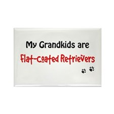 Flatcoat Grandkids Rectangle Magnet