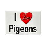 I Love Pigeons Rectangle Magnet (10 pack)