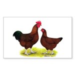 Red Broiler Chickens 2 Rectangle Sticker 50 pk)