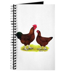 Red Broiler Chickens 2 Journal