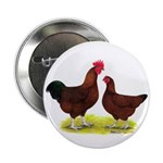 "Red Broiler Chickens 2 2.25"" Button"