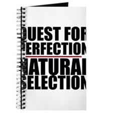 QUEST FOR PERFECTION Journal