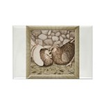 Stone Homer Pigeons Rectangle Magnet (10 pack)