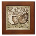 Stone Homer Pigeons Framed Tile