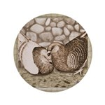 """Stone Homer Pigeons 3.5"""" Button (100 pack)"""