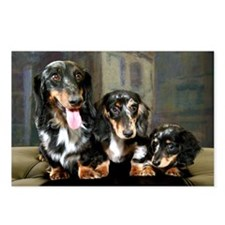 Doxies Long Hair Postcards (Package of 8)