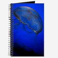 Jellyfish Watercolor Journal
