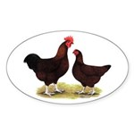Dk Red Broiler Chickens Oval Sticker (50 pk)