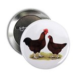 """Dk Red Broiler Chickens 2.25"""" Button (10 pack"""