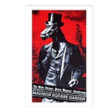White Stripes @ MSG Postcards (Package of 8)