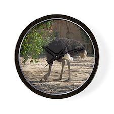 ostrich 6 Wall Clock