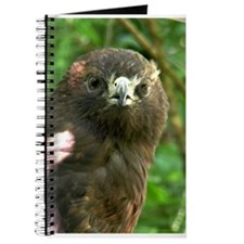 Hawk Journal