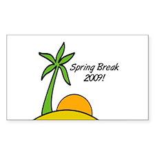Spring Break 2009 Rectangle Decal