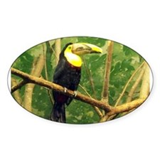 chestnut-mandibled toucan Oval Decal