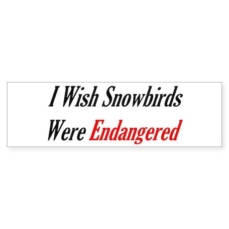 Snowbirds Endangered Bumper Sticker