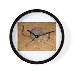 Woylie Wall Clock