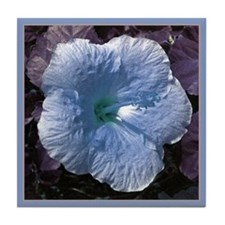 Pale Blue Hibiscus Tile in a Blue Border
