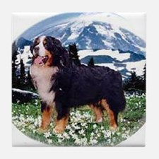 Cute Berner Tile Coaster