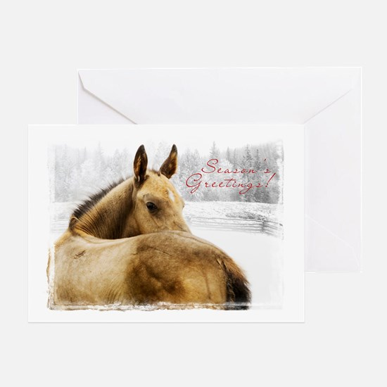 Christmas Foal Greeting Card