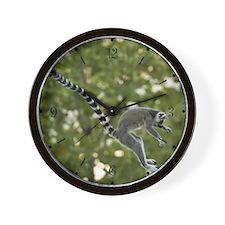 Lemur Jump Wall Clock