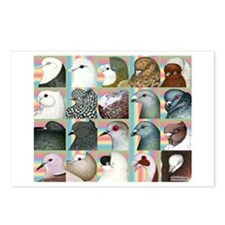 Twenty Pigeon Heads Postcards (Package of 8)