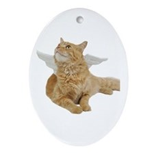 Orange Angel Cat Oval Ornament