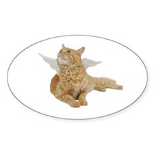 Orange Angel Cat Oval Decal