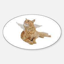 Orange Angel Cat Oval Decal