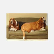 Basset Hounds Rectangle Magnet