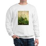 Turf Sweatshirt