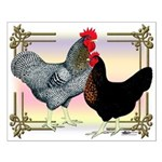 Black SL Chickens Small Poster